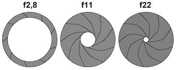 diaphragme.jpg.ebab53d3004c2e2424097d02cf11fcfe.jpg
