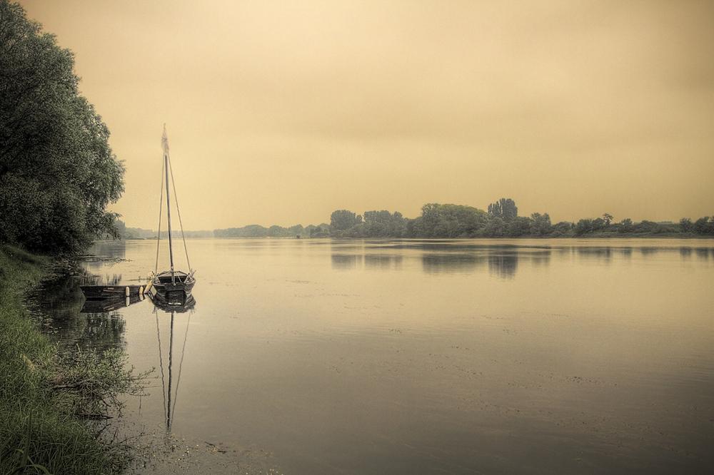 dorure-de-Loire.thumb.jpg.d90f3403d40cd2aa847c383abf540e6f.jpg