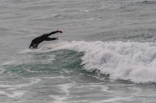 PLONGEON DU SURFEUR.jpg