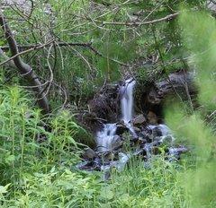 Fontaine 3.jpg