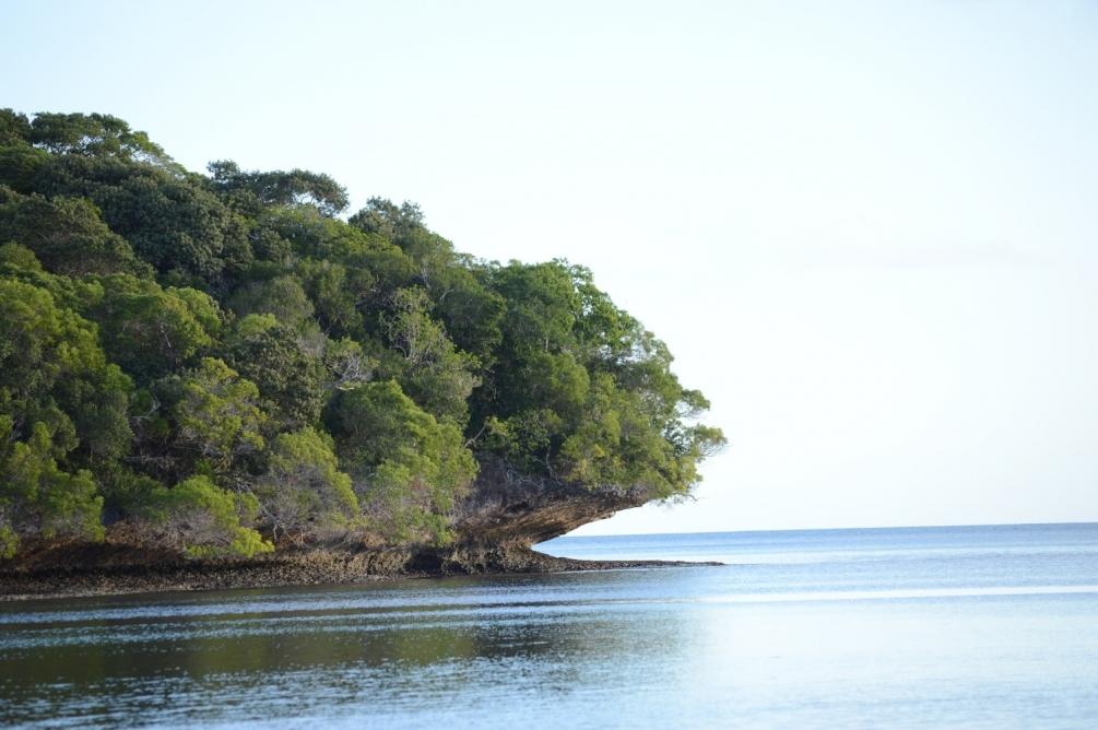 Nouvelle-Calédonie 1.JPG