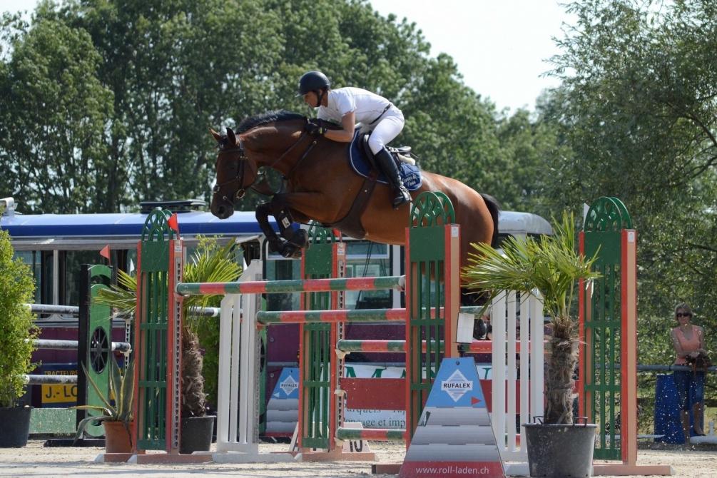 chevaux2.jpg