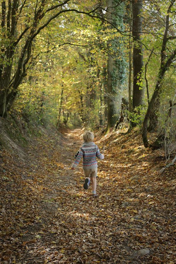 chemin et enfant.jpg