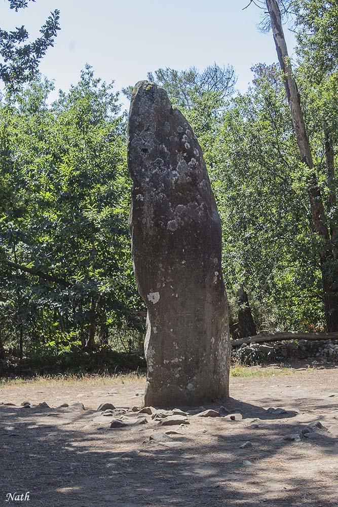 Ménhir géant de Manio 6.50 m.jpg