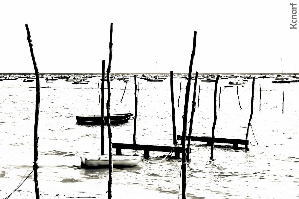 Bassin crémeux.jpg