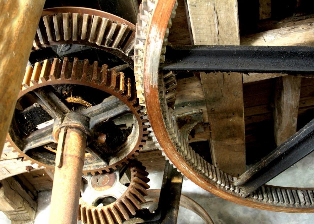 Mecanismes (Copier).jpg