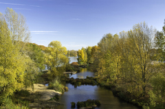 Orleans vue du pont Georges V