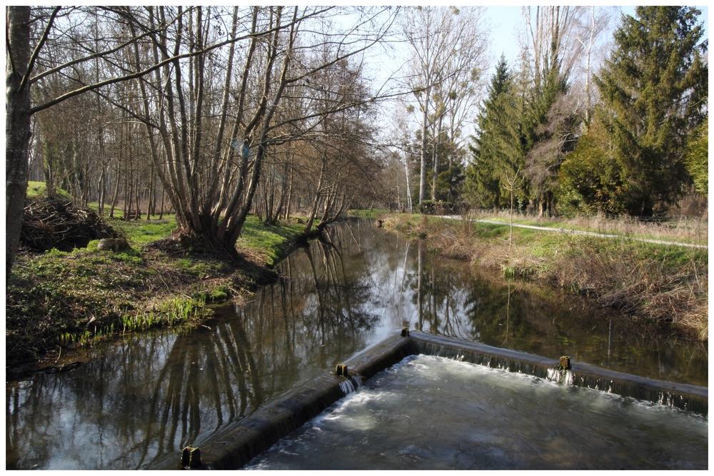 IMG_0413 A la rivière.JPG