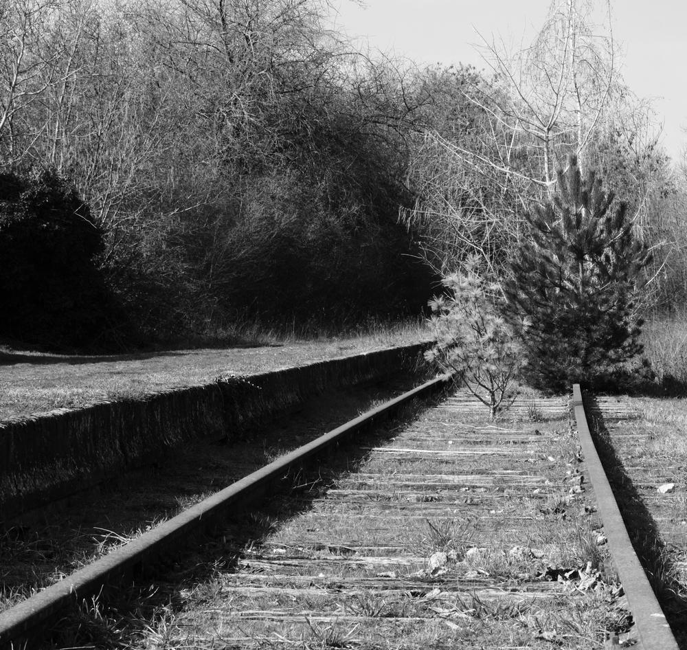 IMG_0443 Les Rails.JPG