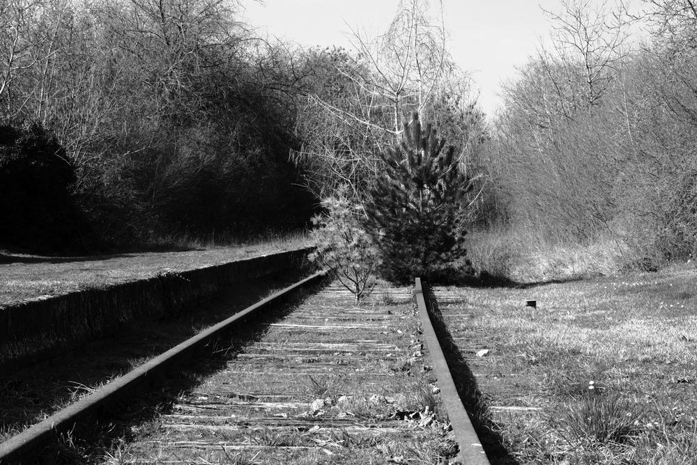 IMG_0443 Rail road.JPG