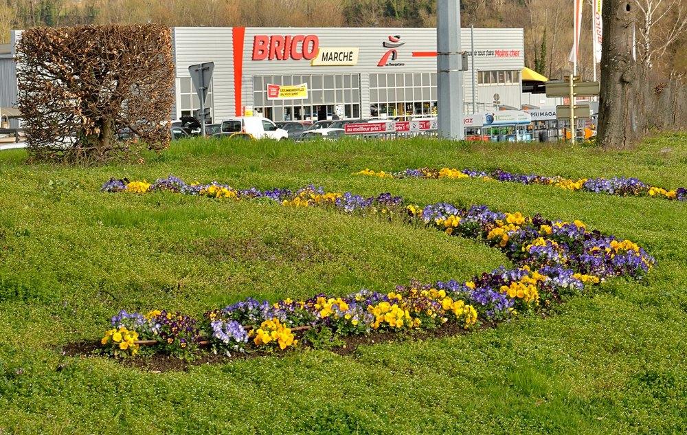 2021-03-18 Les fleurs (2) POSTEE.jpg