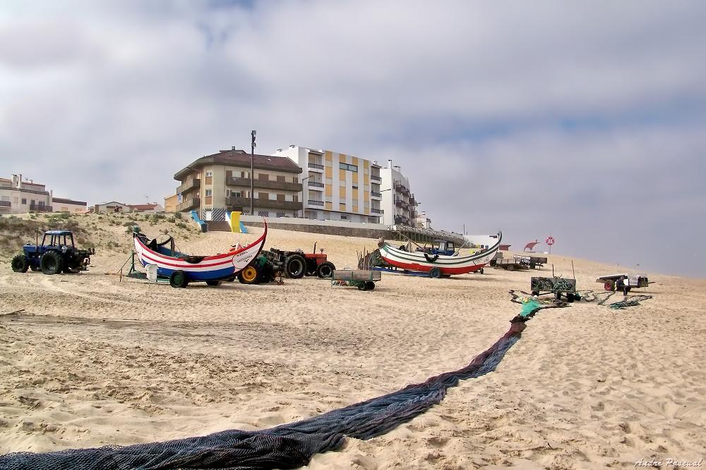 Portugal_6_1000.jpg