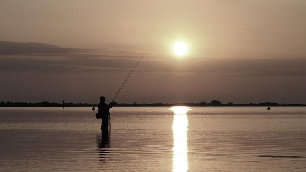 Pêche_matinale.jpg